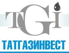 Генеральный директор  ЗАО ИХК «Татгазинвес»